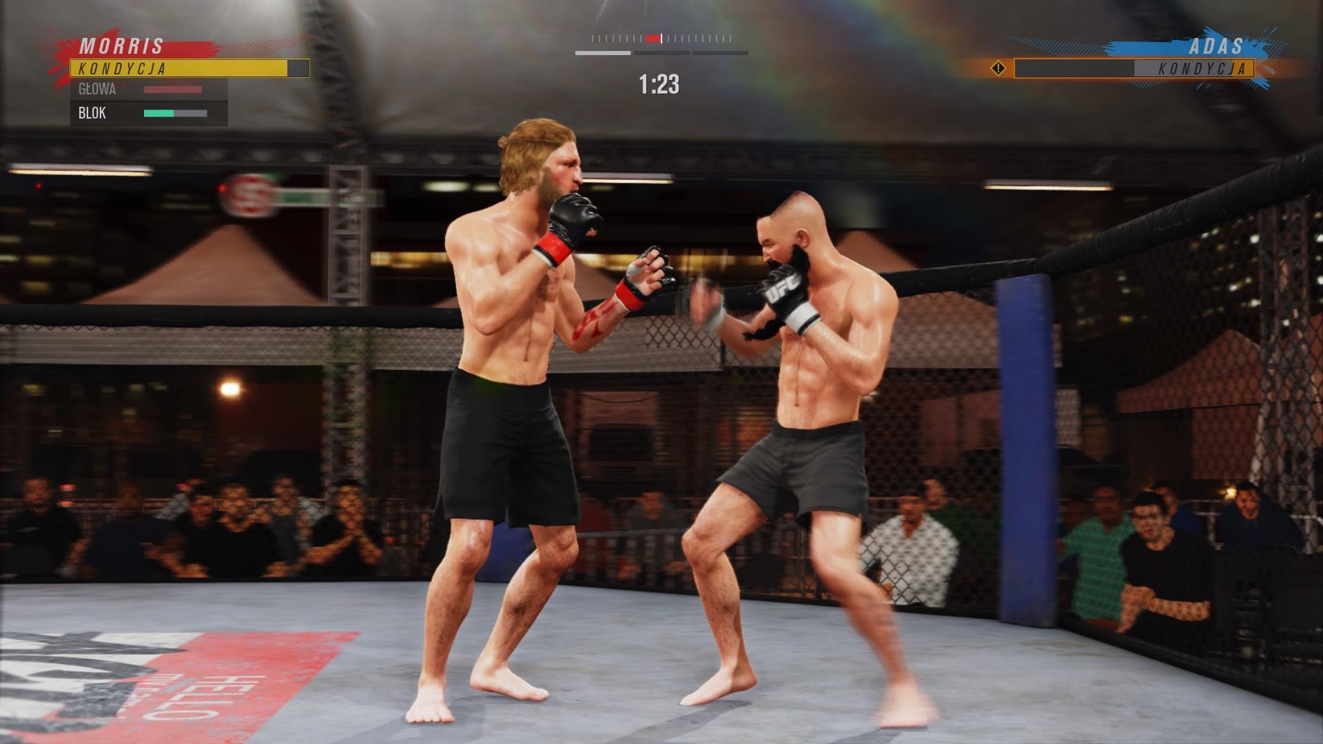 UFC_4_recenzja_5_